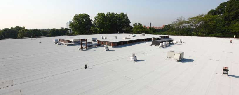 roof tech associates elastoflex